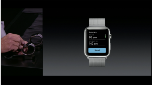 apple-watch-new-bands (1)